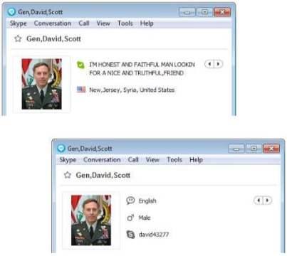 Skype N 1