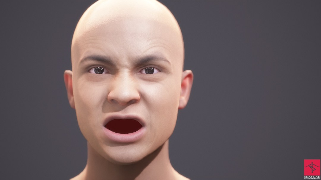 face animation emotion capture