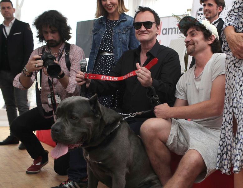 Photo by Petros Giannakouris/AP/REX/Shutterstock (10247388c) Director Quentin Tarantino poses for photographers with the Palm Dog collar award for the the dog Brandy that appeared in his film 'Once Upon a Time in Hollywood' at the 72nd international film festival, Cannes, southern France 2019 Palm Dog Photo Call, Cannes, France - 24 May 2019