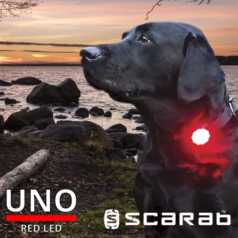 Scarab Beacon Uno