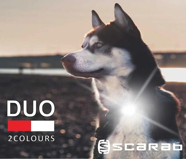 Scarab Beacon DUO Dog Light