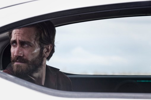 Nocturnal Animals Still (2)