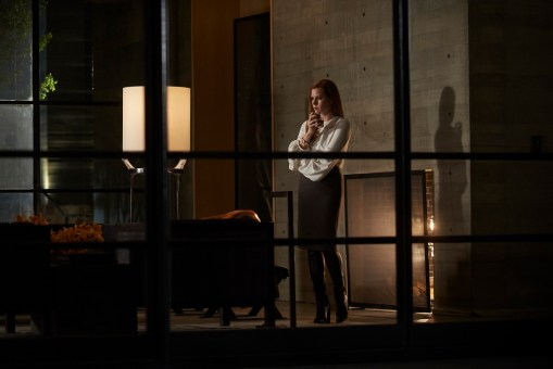 Nocturnal Animals Still (3)