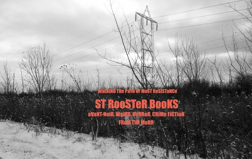 St. Rooster Books