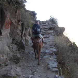 The narrow, stoney track