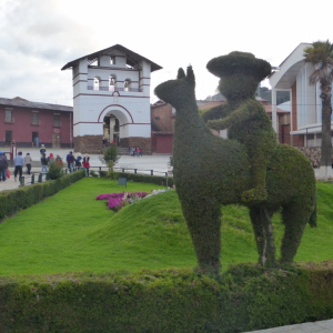 topiary in Huamachuco