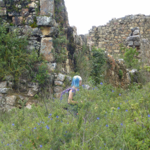 exploring the ruins