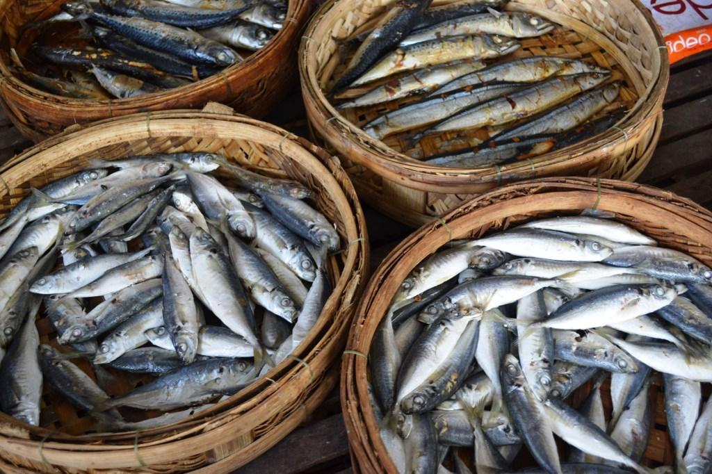 Lak Lake fish