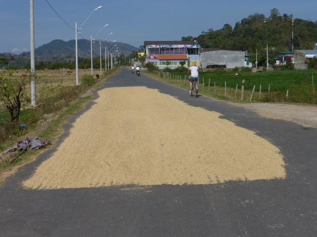 Lak Lake rice