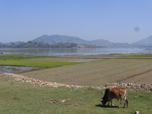 Lak Lake rural scene