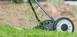 hand lawn mower