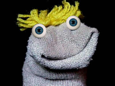 Image result for sock puppet pictures