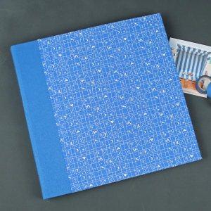 Blau weißes Kinderfotoalbum klassisches Hähnchenmuster