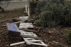 A once proud picket fence carelessly knocked down, with signs roughly uprooted and dropped upon them. (Photo by Will Wright)