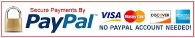scene clean credit card payments