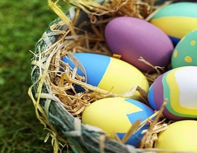 Proposed Egg Hunt