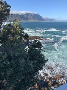 Penguin Beach South Africa, Boulders Beach South Africa, Luxury Travel Planner