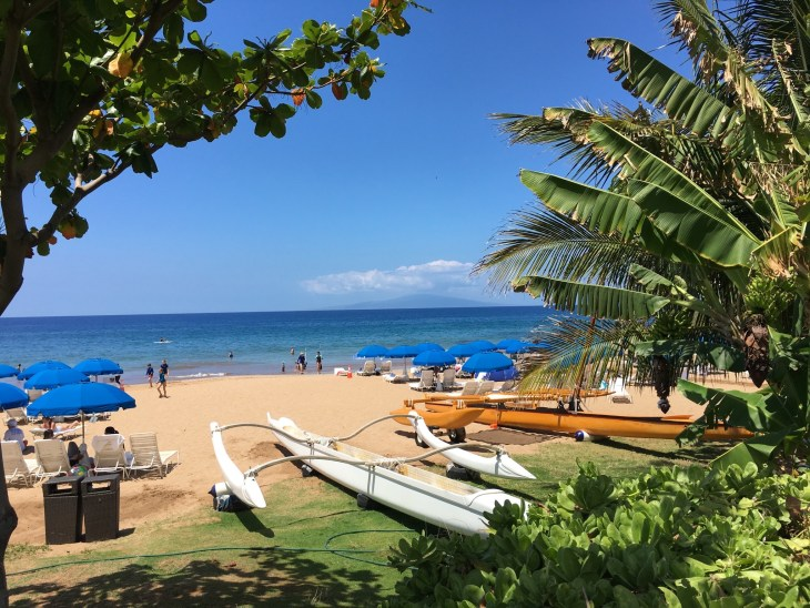 COVID-19 Travel Restrictions 2021, Travel to Maui 2021, Hawaii Travel 2021, Scenic Way Travel