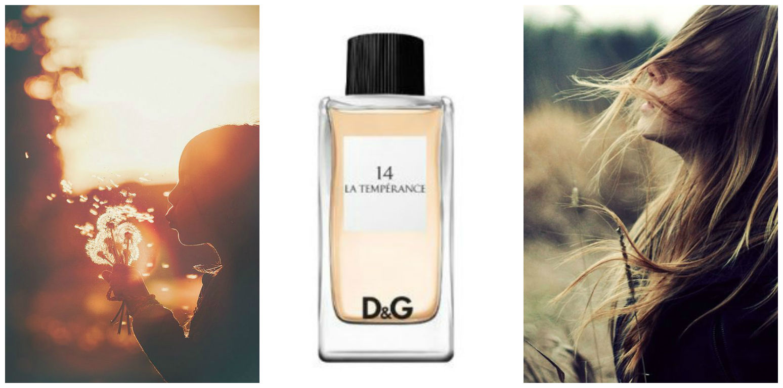 Perfume of the Day: Anthology La Temperance 14 by Dolce&Gabbana