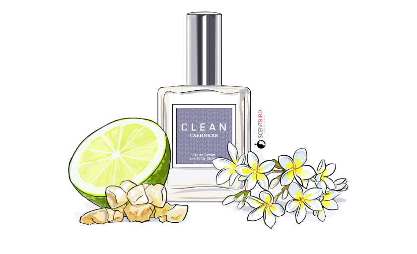 Wednesday Scent Mood: Cashmere by CLEAN
