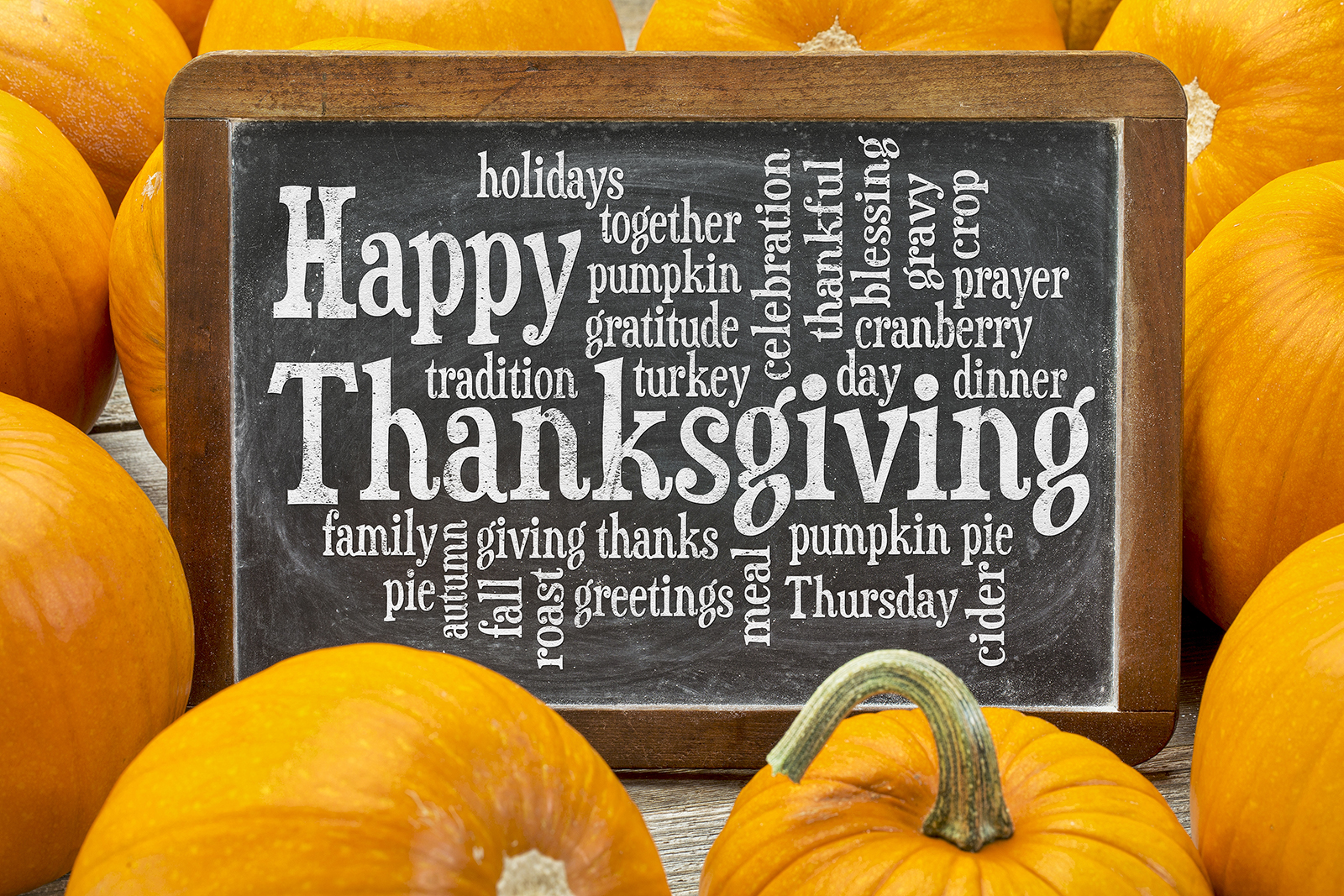 A Very Happy Thanksgiving