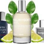 Begramot perfumes