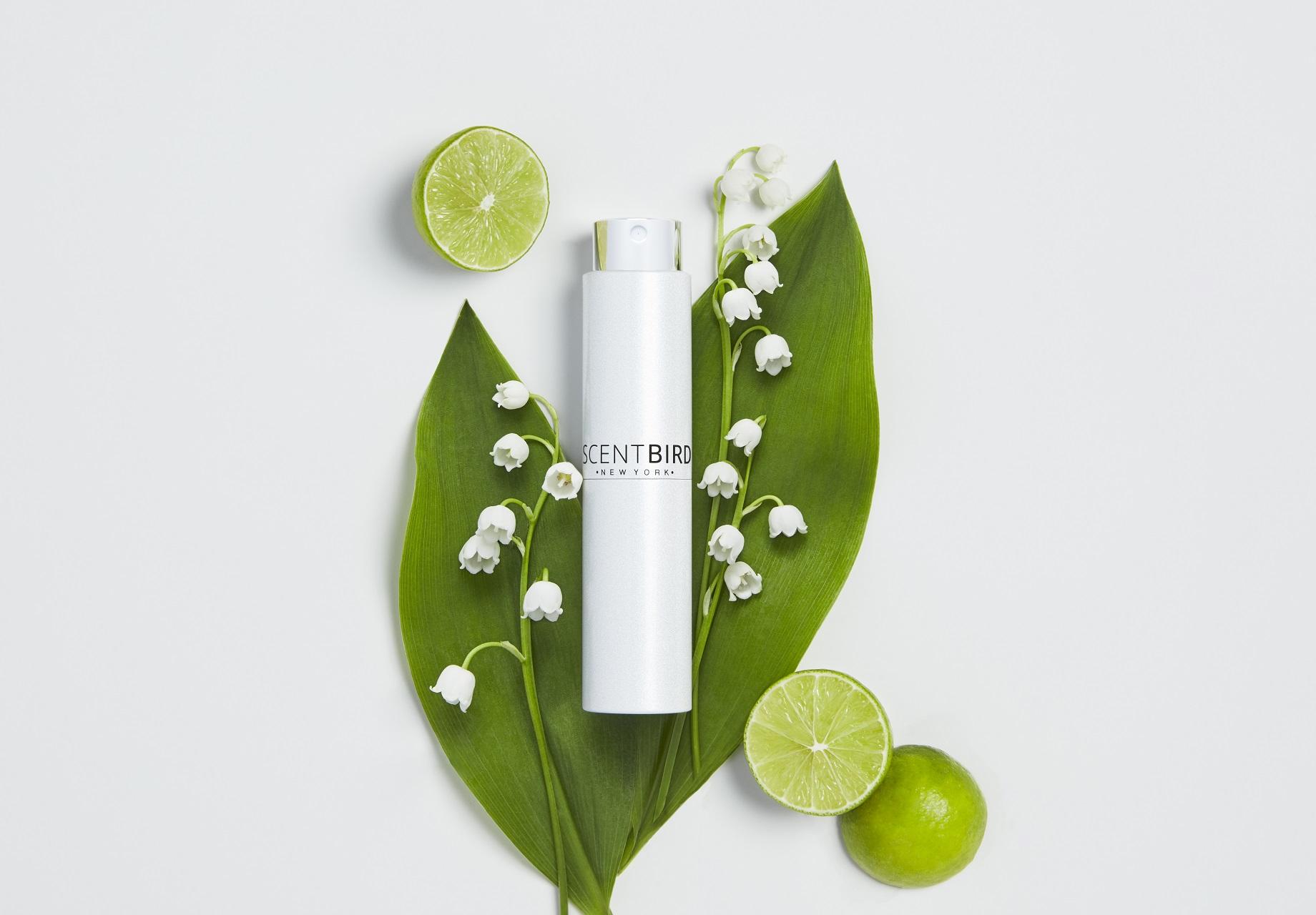 Unisex Summer Fragrances