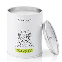 Scentbird Cucumber Lotus Candle
