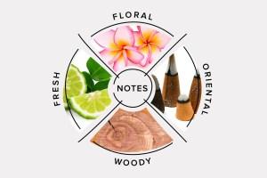 fragrance categories