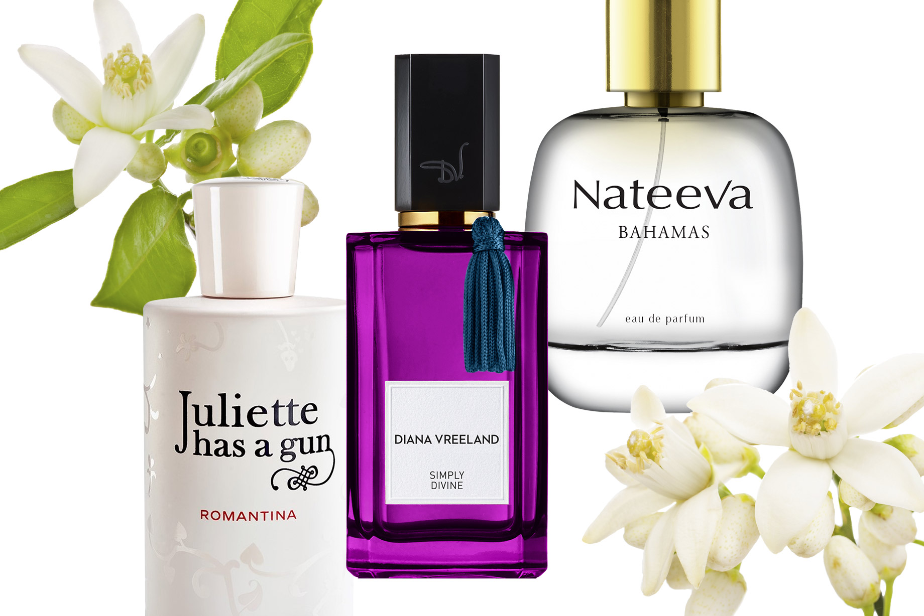 Celebrate National Orange Blossom Day With Amazing Scents