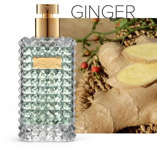 Ginger 1