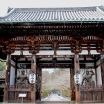 【滋賀】瀬田川沿いの古刹「石山寺」とびわこ花噴水