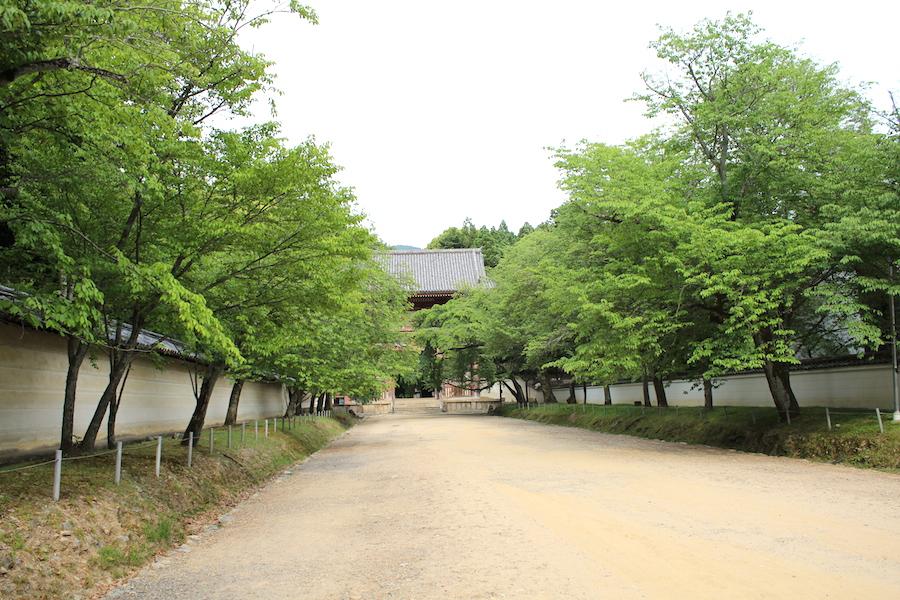 daigoji2