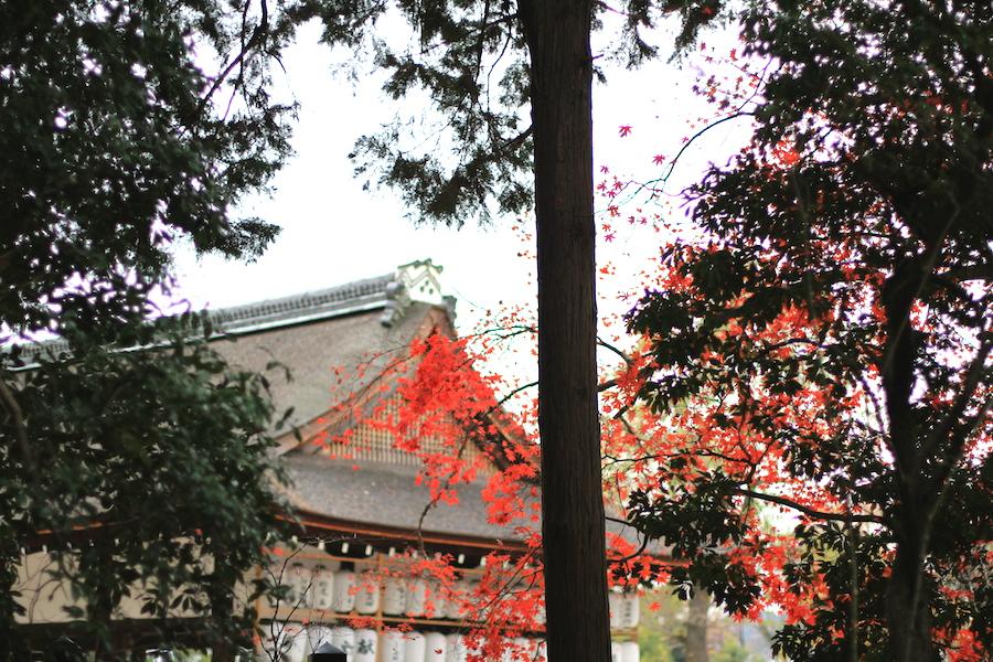kamigamo shrine3