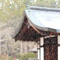 【和歌山】冬の高野山へは覚悟して行きましょう