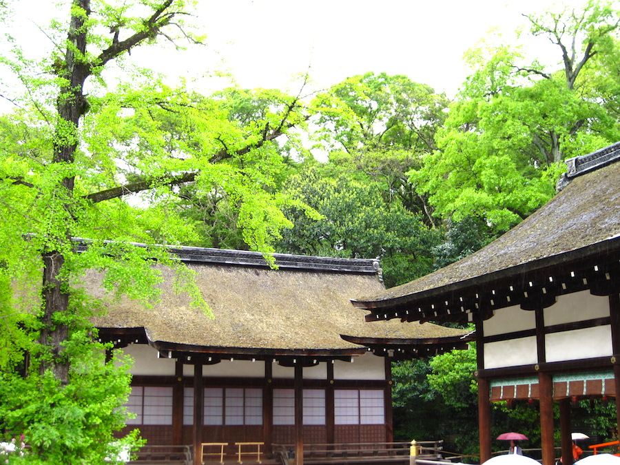 shimogamo shrine5