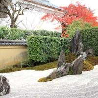 【京都洛北】参拝推奨!大徳寺の塔頭「瑞峯院」「高桐院」
