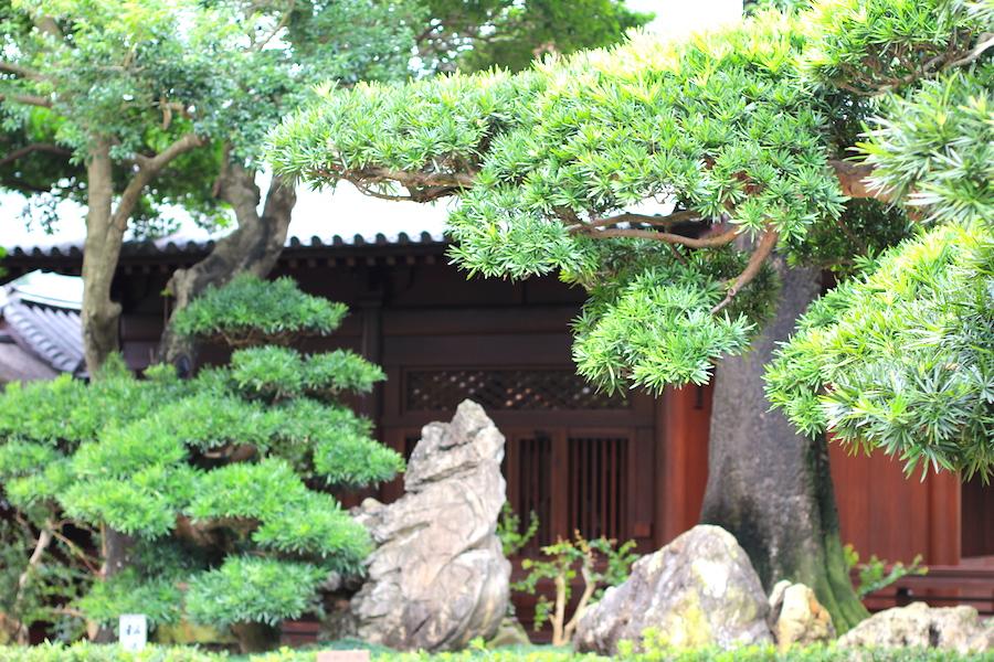 nan lian garden4