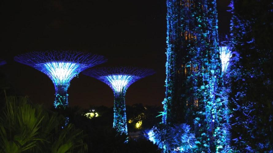 【シンガポール】夢の世界が広がるガーデンズ・バイ・ザ・ベイは夜に行くべし