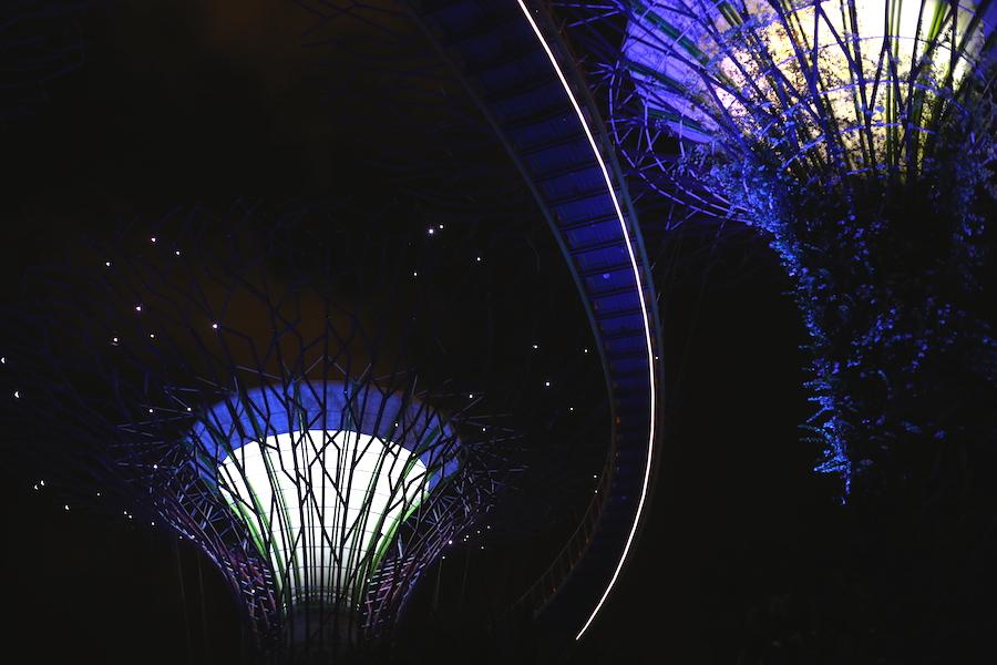 gardensbtb at night4