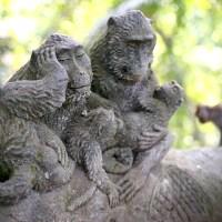 【バリ島】ウブドに行ったらまずモンキーフォレストへGO!