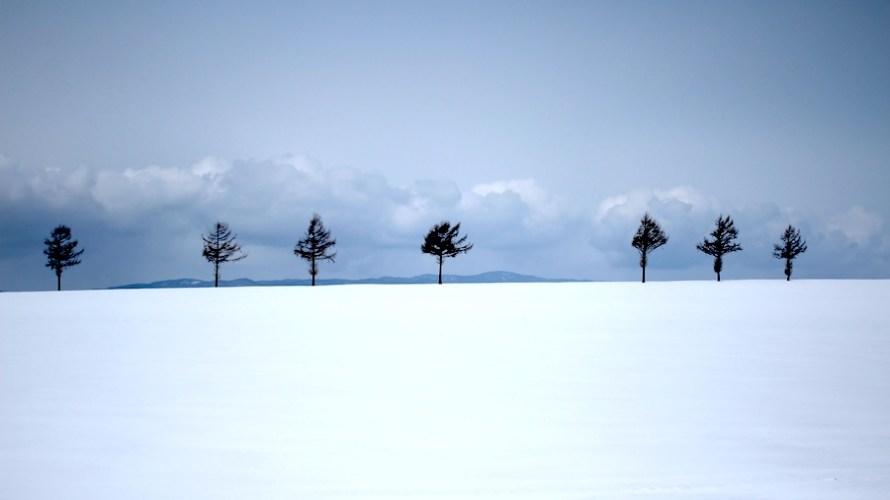 【北海道】写真好き必見!冬の大地の息吹を感じる風景