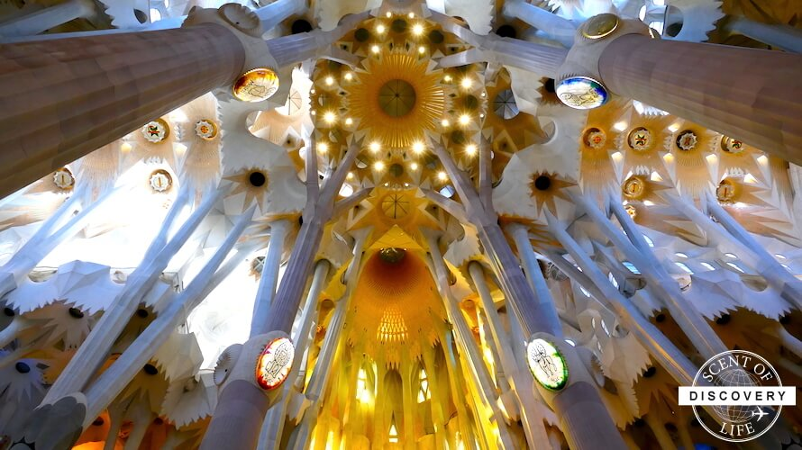 【バルセロナ】誰もが訪れるサグラダファミリアだからこそ事前準備が必須!