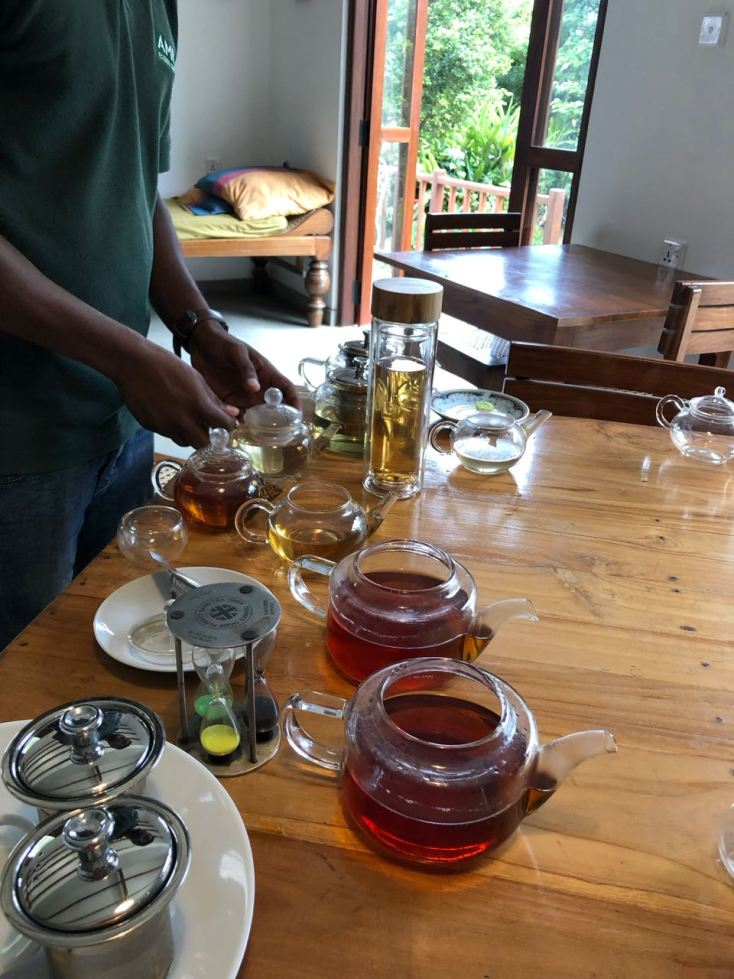 Sampling Tea at AMBA