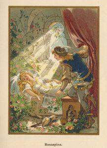Illustrazione della versione tedesca Rosaspina / Fonte: Pinterest.