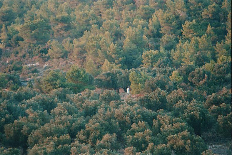 הכוהנת הגדולה של הבככנליה בהרי הכרמל