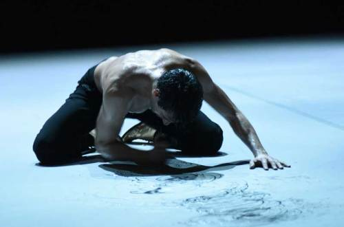 מתוך ניז'ינסקי - גוטייה דאנס תיאטרון מחול שטוטגרט (צילום: Regina_Brocke_klein)