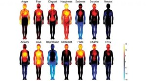 How To Identify Emotions & Feelings