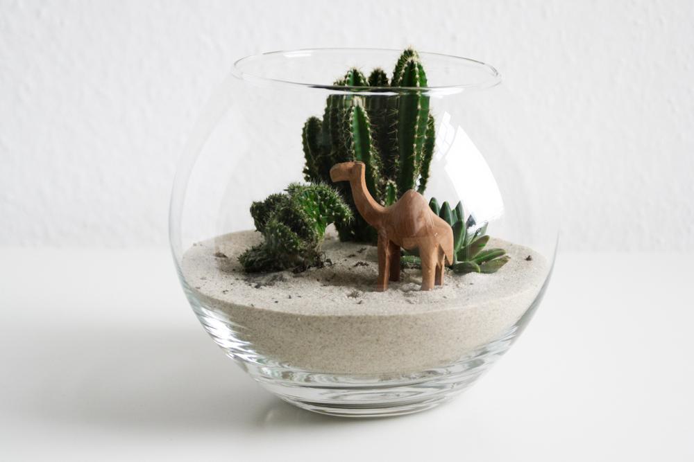 DIY Miniatur-Wüste
