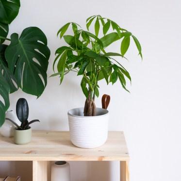 DIY Blumentopf gestalten schereleimpapier kreative Tutorials für DIY Geschenke, DIY Möbel und DIY Deko zum Basteln